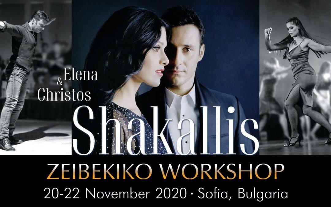 Зейбекико Семинар с Елена и Христос Шакалис